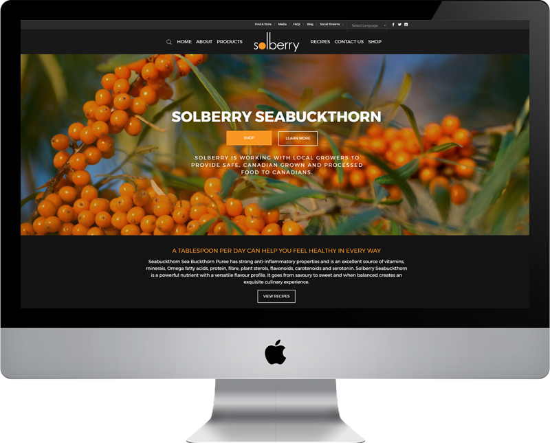 Solberry website desgin and development services by Dynamite Design